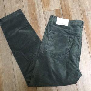 NWT -  green velvet LOFT pants